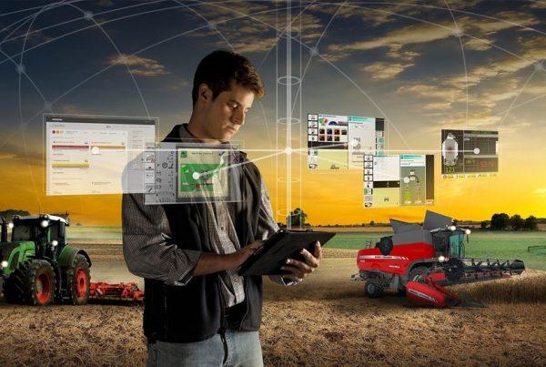 Inta informa: el manejo virtual potencia la gestión de los rodeos